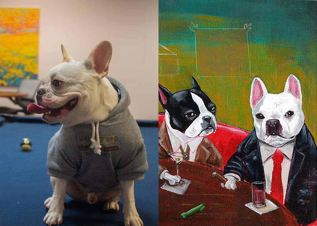 Jerry, a French Bulldog, and Brian Rubenacker's Three Boston Terriers and a French Bulldog