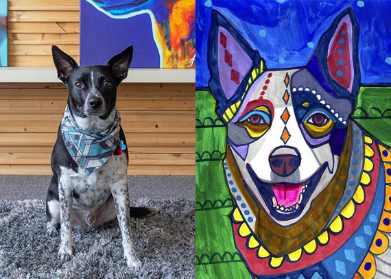 Reilly, a Blue Heeler, and Heather Galler's Australian Cattle Dog