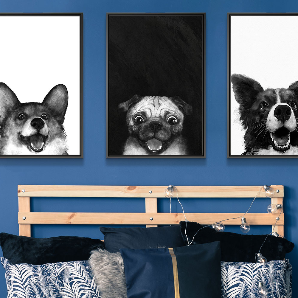 Decorating with dog art: black and white prints pop against a colorful background.