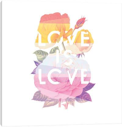 Love is Love canvas print by Heather Landis