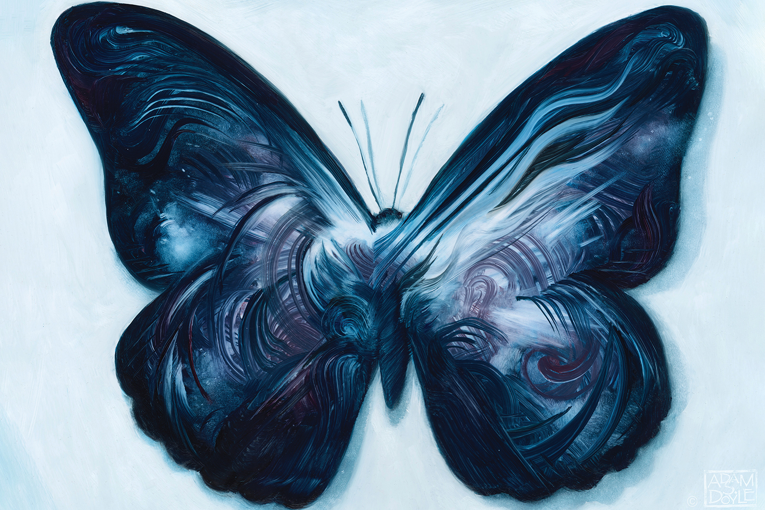 a dark blue butterfly or moth with textured paint on the wings