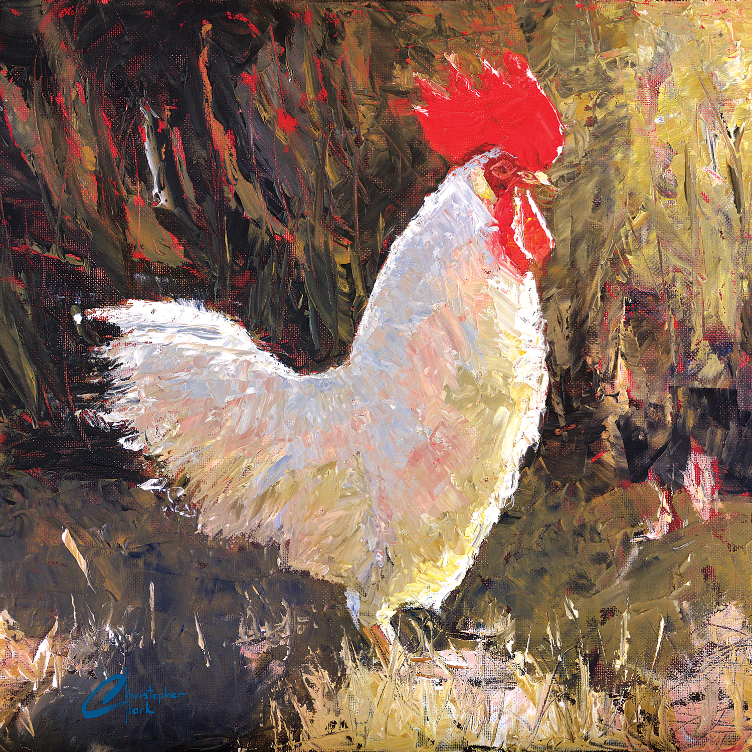 a rooster standing