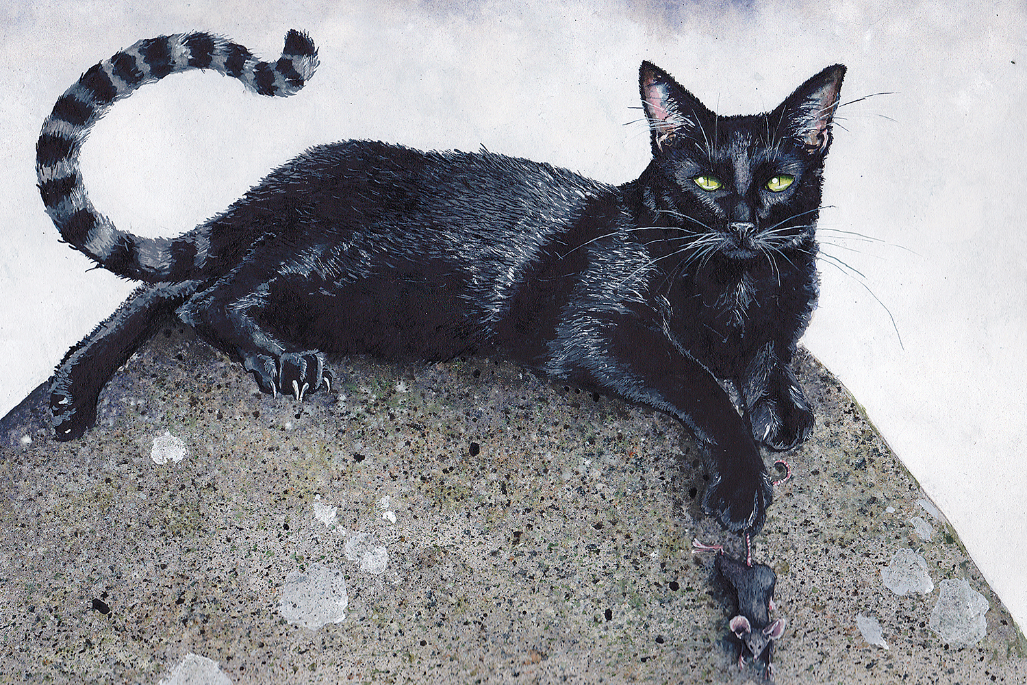 black cat laying on rock with claws out holding on to a mouse's tail