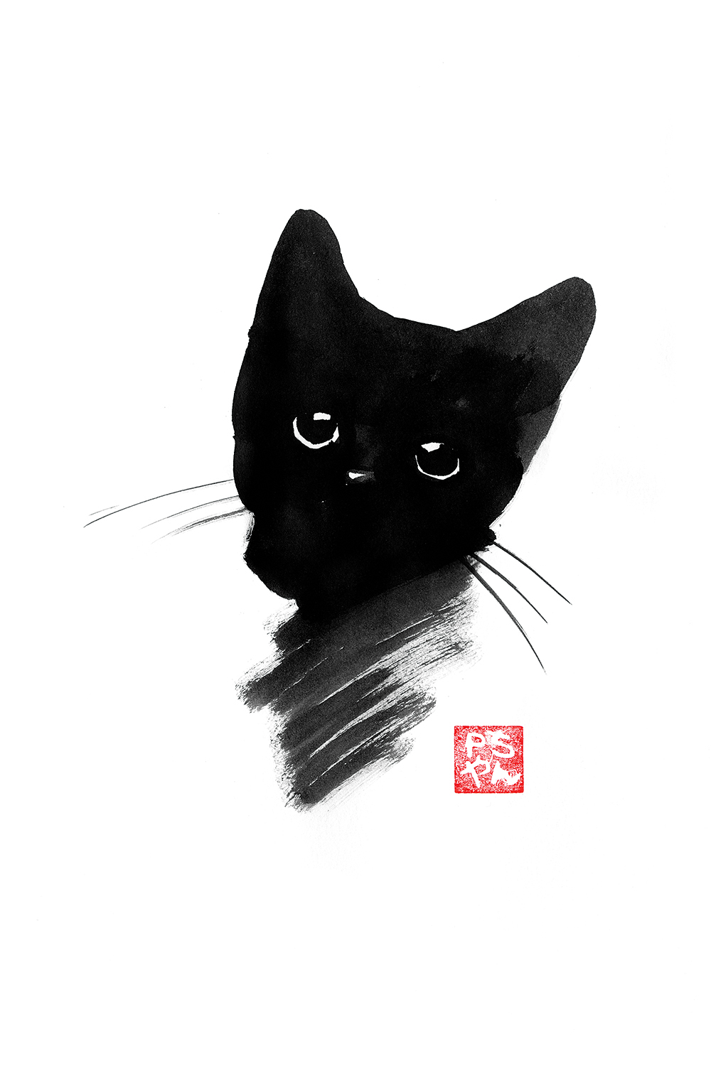 head of a black cat on white background