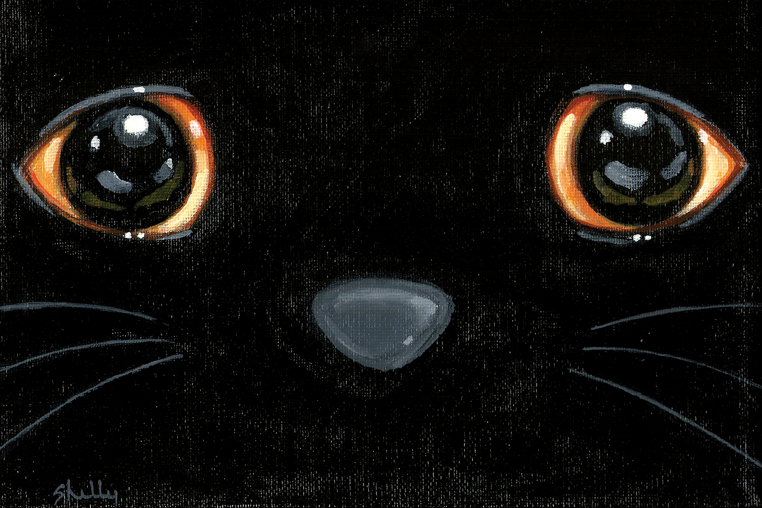 close up of a black cat's face showing just eyes, nose and whiskers