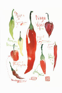 a white print showing eight pepper variations with their names including jalapeno, naga viper, and madagascar