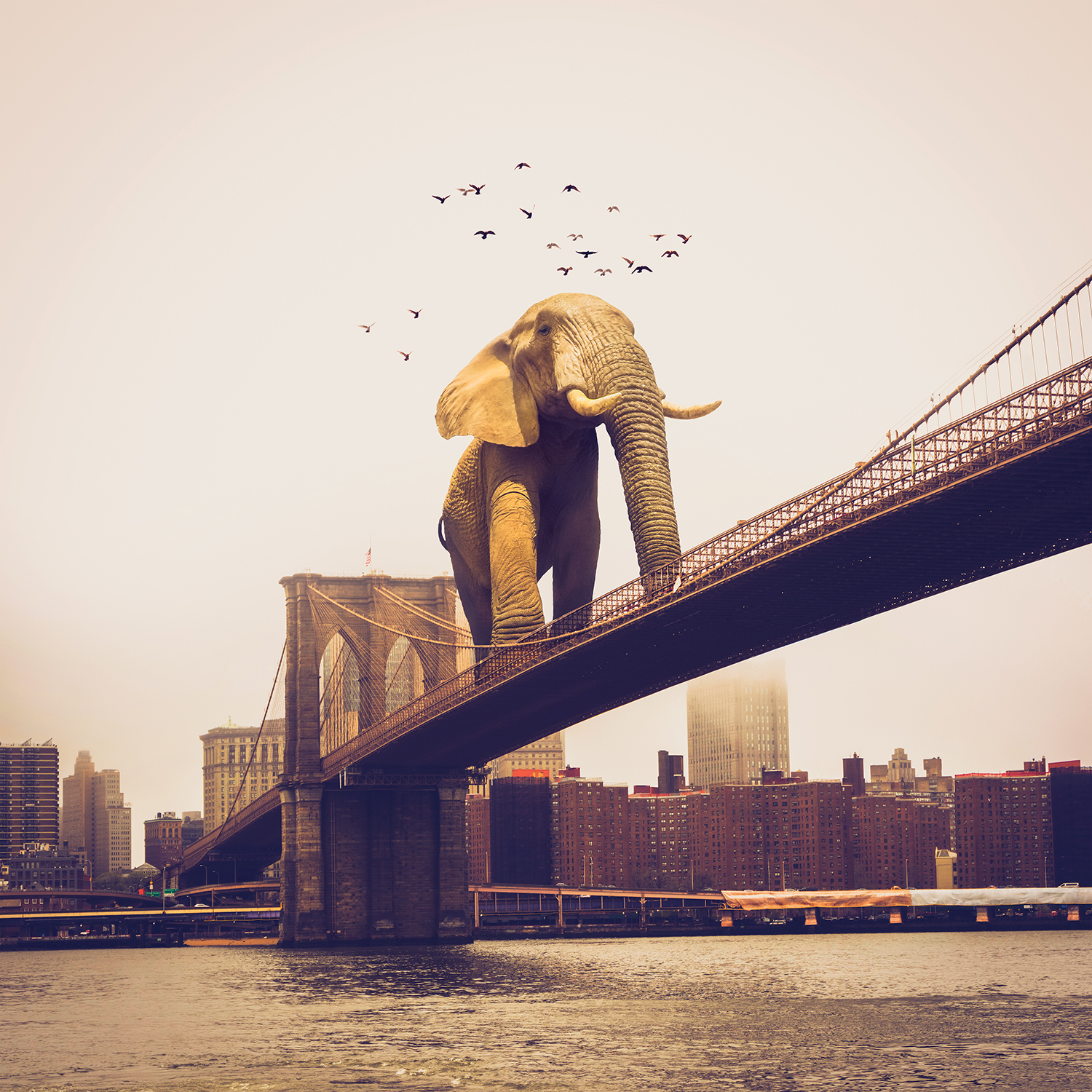 a giant elephant crossing the brooklyn bridge with a flock of birds flying nearby