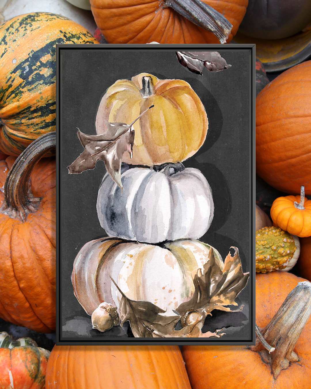 Three different colored pumpkins with brown autumn leaves and an acorn on a black background