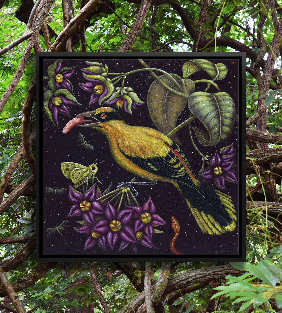 Image of yellow and black bird with a human finger in its beak surrounded by green leaves and purple flowers