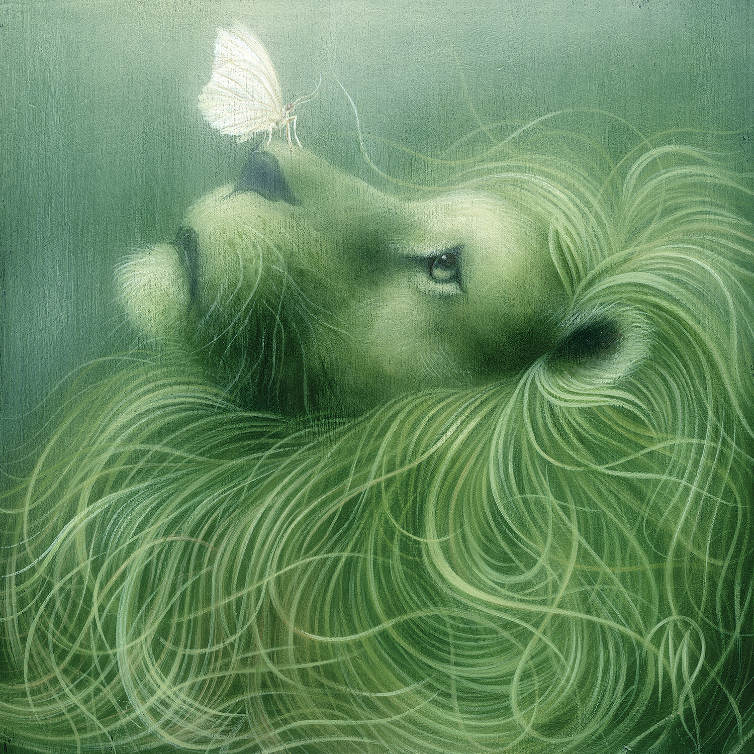 Illustration of a lion in a green tone looking up to a white butterfly on its nose