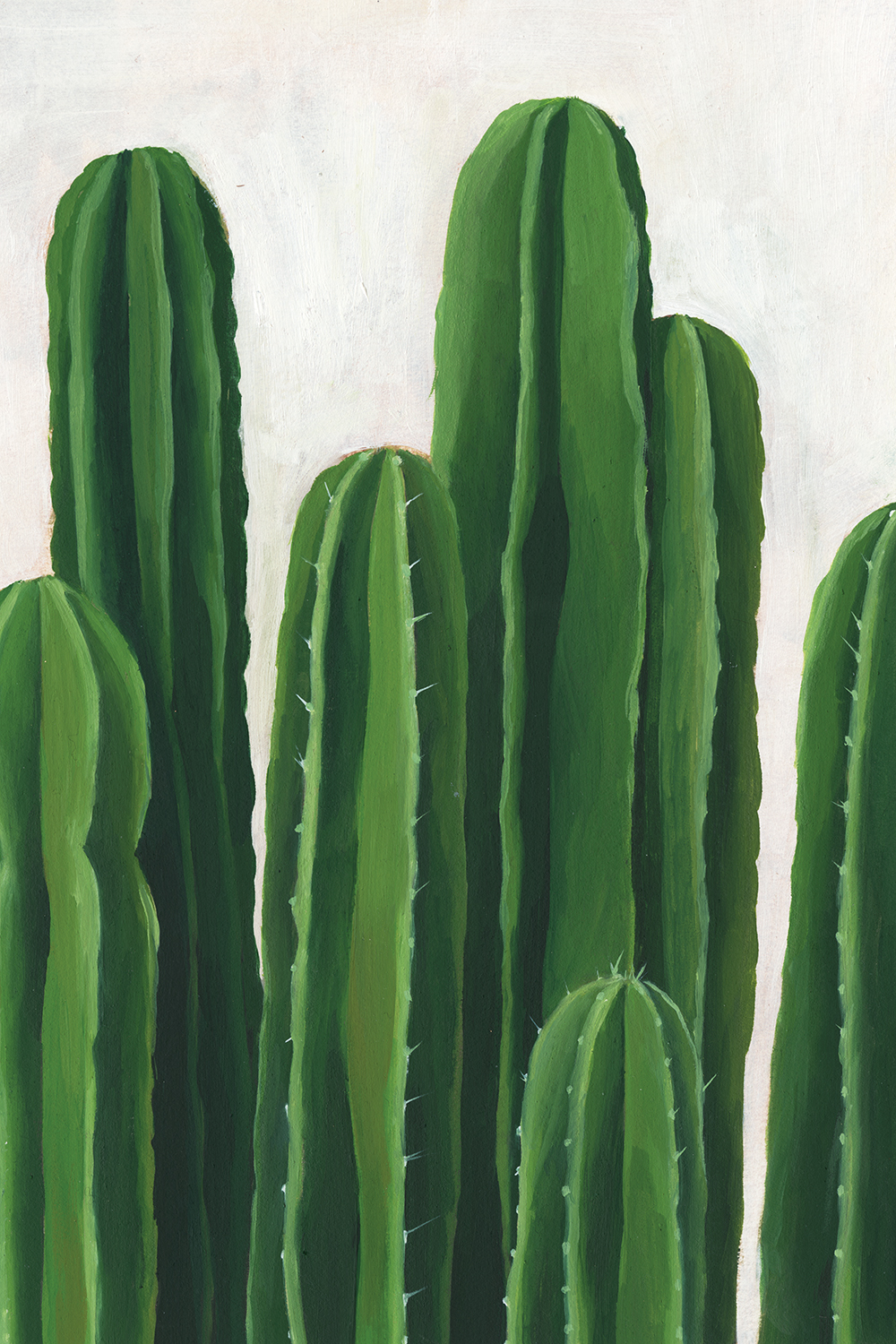 Image of seven green cacti clustered together on a white background