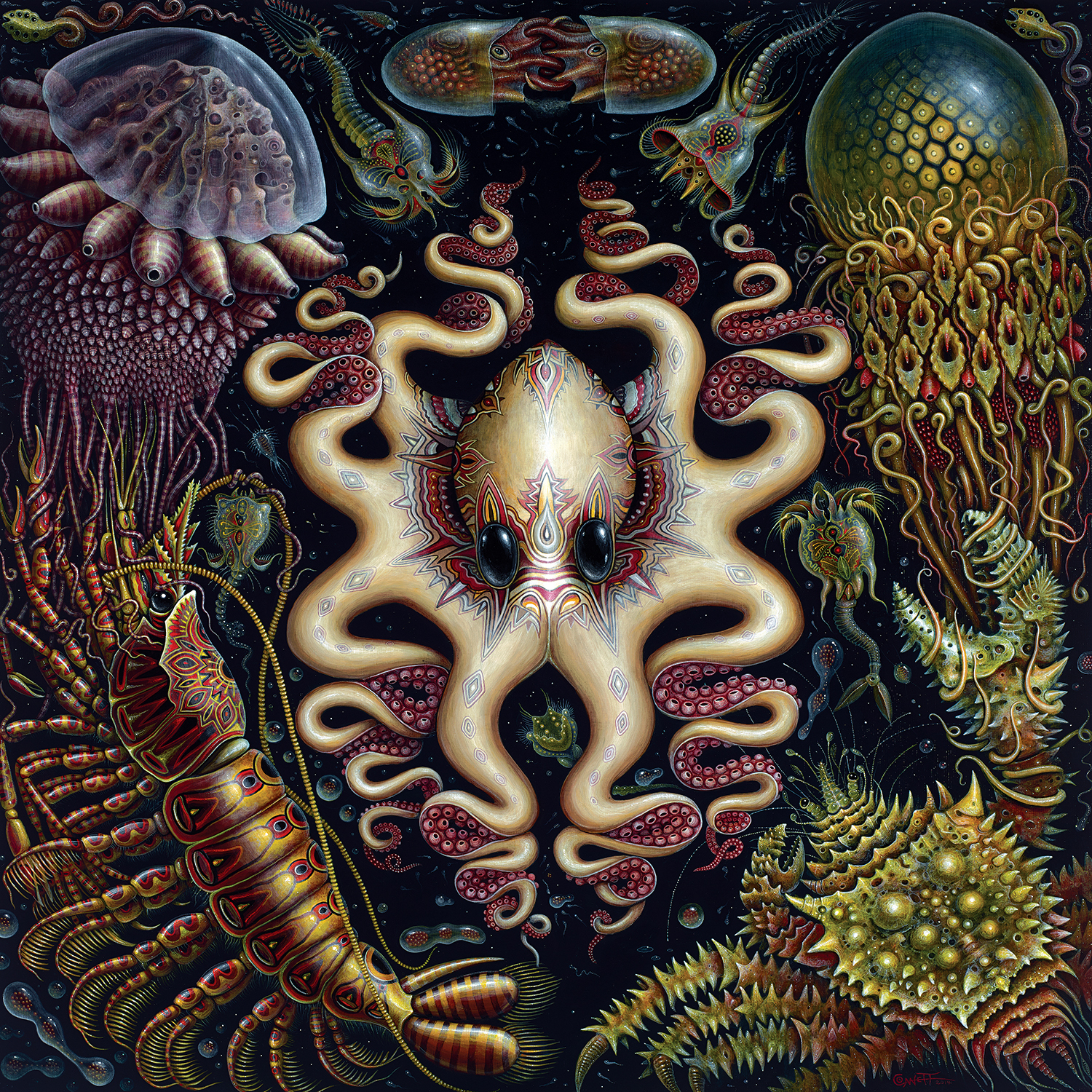 Octopus with large black eyes surrounded by underwater beings