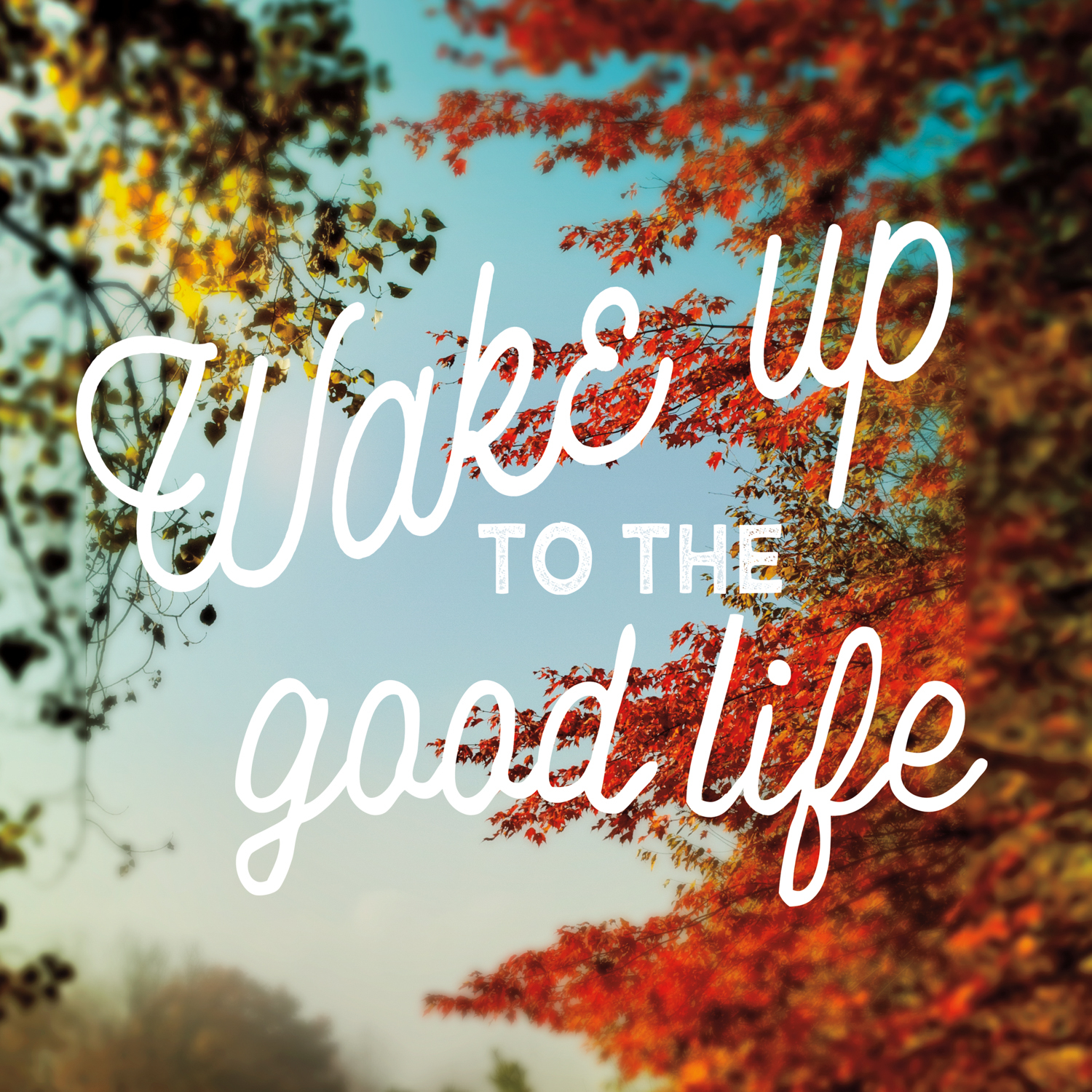 Typography with positive phrase over image of fall foliage