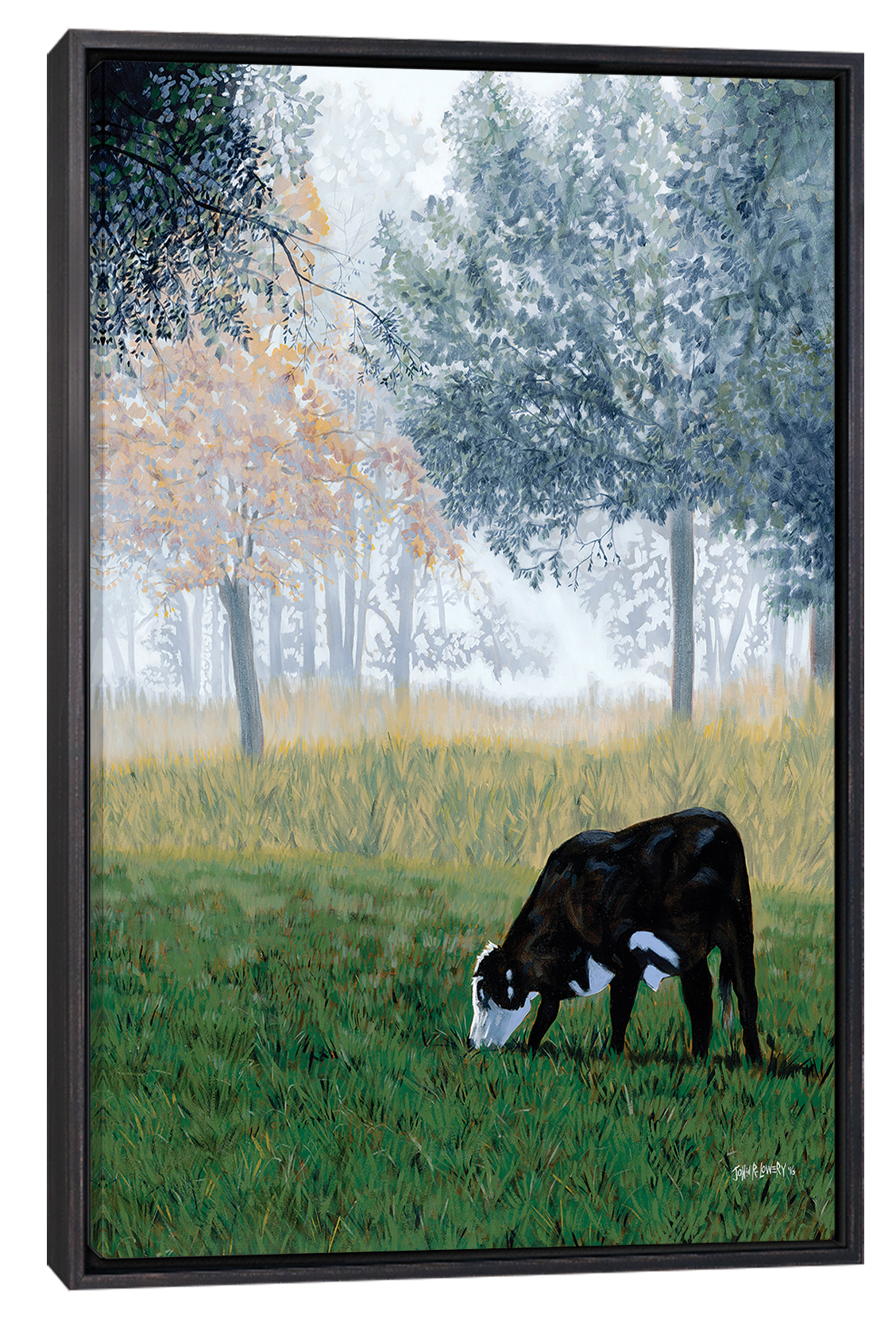 a cow grazing in grass that leads into a foggy wooded field