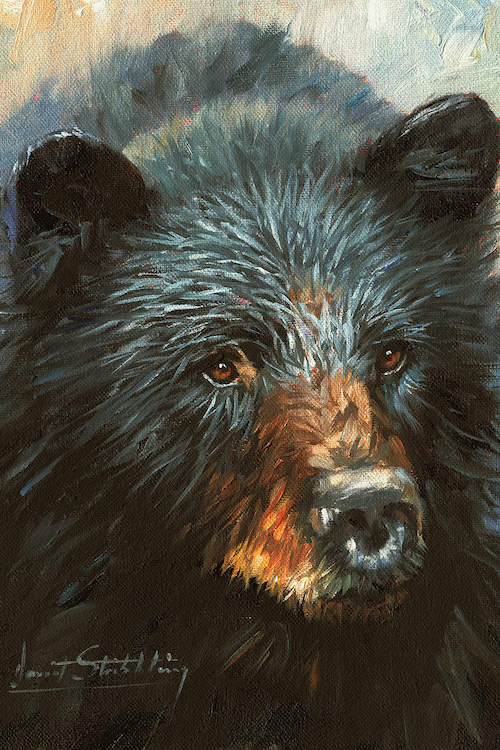 Close up portrait of a black bear against a gold and light blue background