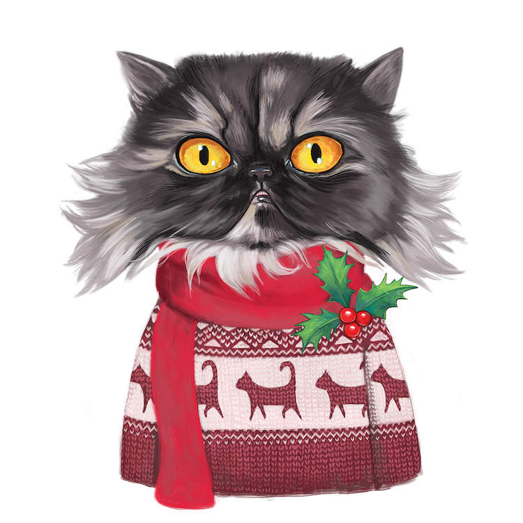 Gray furry cat with yellow eyes wearing a Christmas sweater and a scarf with mistletoe on it