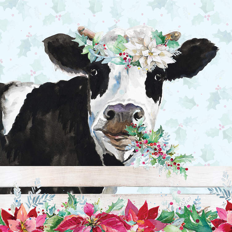Image of a cow wearing a Christmas floral crown with mistletoe in its mouth leaning over a white fence lined with poinsettias