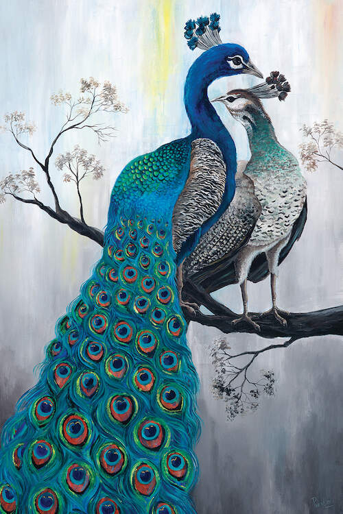Image of a peacock standing on a branch with another smaller peacock