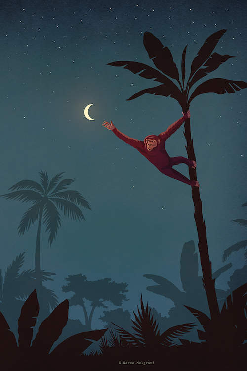 A monkey climbing a palm tree reaching for a crescent moon that looks like a banana at nighttime in a jungle