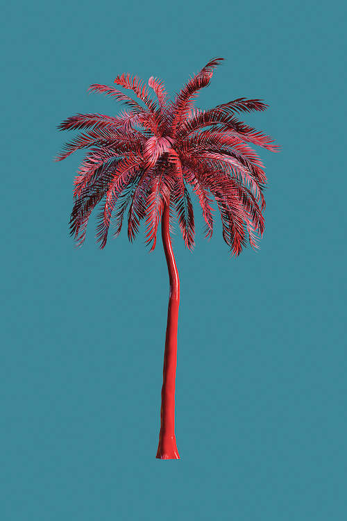 """""""Tall Trees In Green"""" by Honeymoon Hotel shows a pink palm tree against a blue background."""