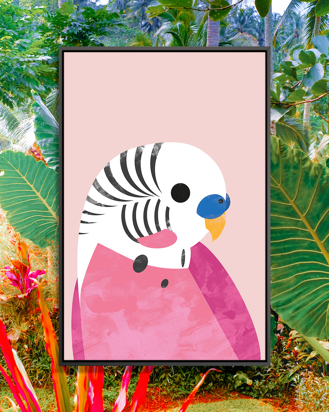 """""""Budgie"""" by Dan Hobday shows a white and pink budgerigar against a pink background."""