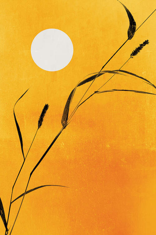 """Sunny Side"" by Kubistika shows a white sun and a single, black cattail plant against a golden yellow background."
