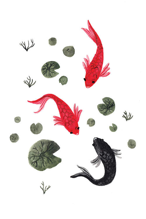 Watercolor illustration of two red and one black Japanese carp fish swimming near lily pads