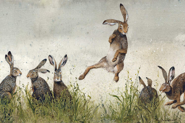 An illustration of six brown rabbits in a field of tall grass with one jumping into the air