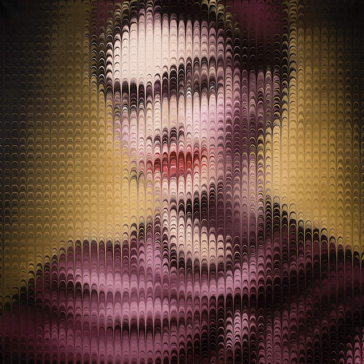 """""""Kahlo 1939"""" by Mikael Takacs shows an obscured portrait of Frida Kahlo behind a pixelated-like texture of arched lines."""