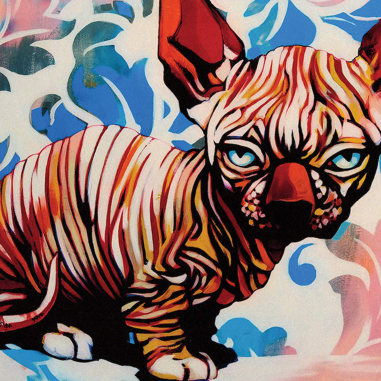 """""""Jealousy"""" by Fernan Mora shows a hairless sphynx cat with blue eyes against a patterned pink and blue background."""