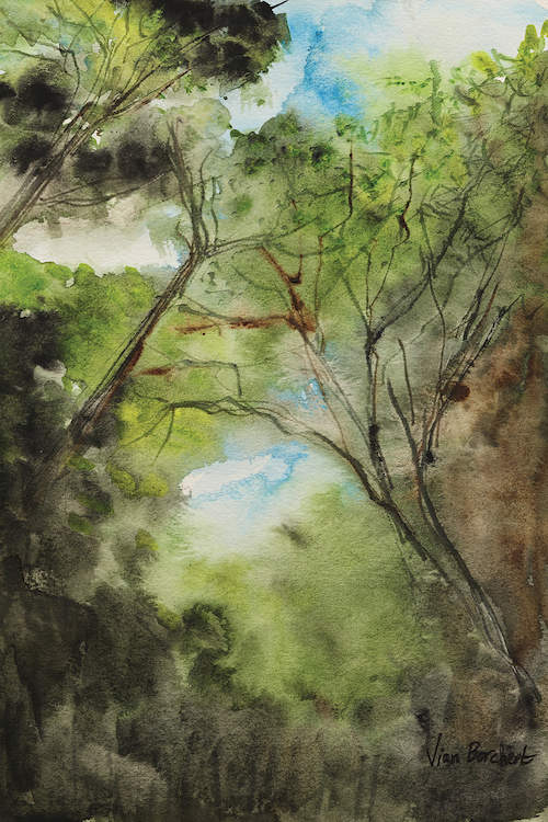 """""""The Woods"""" by Vian Borchert shows an upward view of green trees with the blue sky peeking through."""