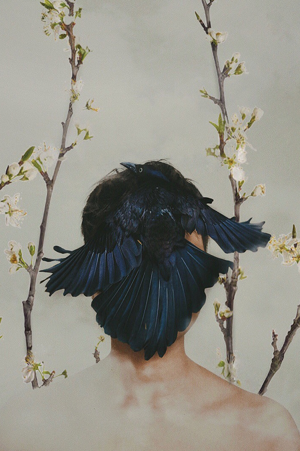 Hiding Ourselves by Deandra Lee shows a woman with a black crow covering her face and white flower branches in the background