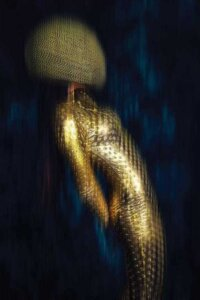 Anti-Gravity by Ruslan Bolgov shows a metallic gold female form wearing a helmet against a black background