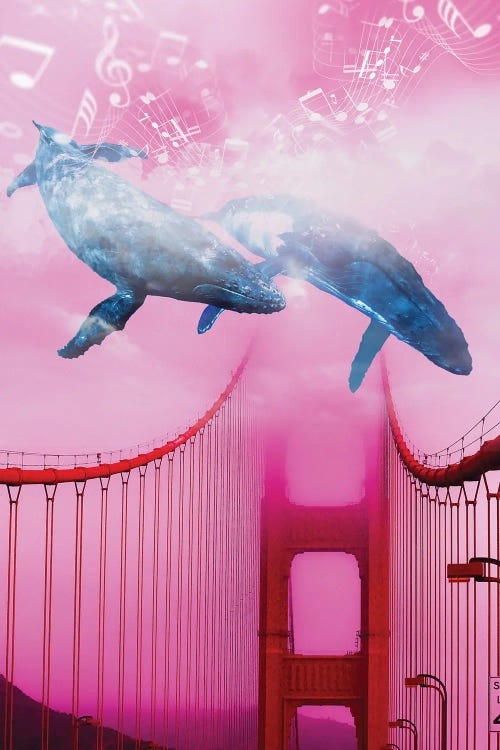 Wall art of two blue whales swimming over the Golden Gate Bridge by David Loblaw