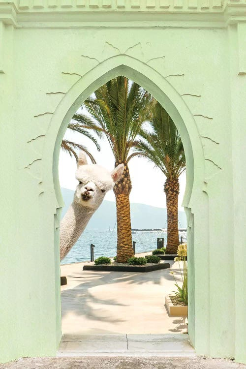 wall art of a white llama peeking through a green doorway with palm trees and ocean behind it by iCanvas artist Erin Summers