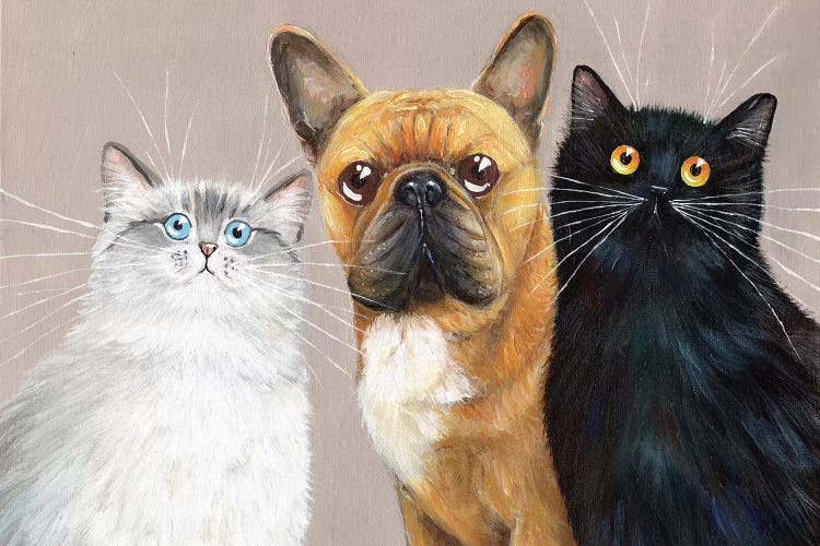 Wall art of a white cat, brown dog and black cat by iCanvas artist Kim Haskins