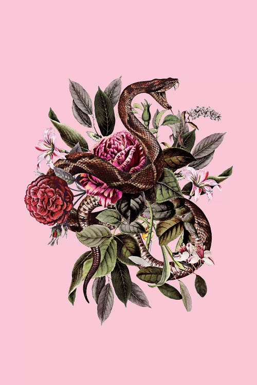 Wall art of green leaves, red flowers and a snake against a pink background by iCanvas artist Burcu Korkmazyurek