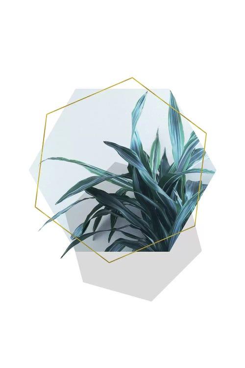 wall art of a minimalist plant and three hexagons by iCanvas artist Emanuela Carratoni
