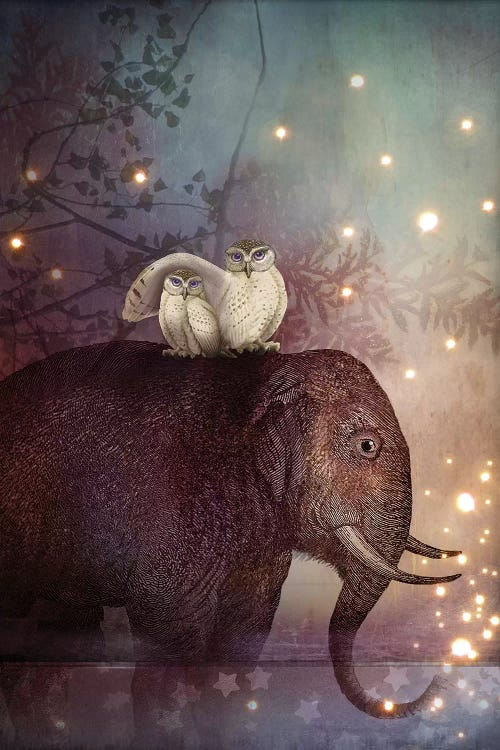 Wall art of an elephant with two white owls on its back with twinkling lights around them by iCanvas artist Catrin Welz-Stein