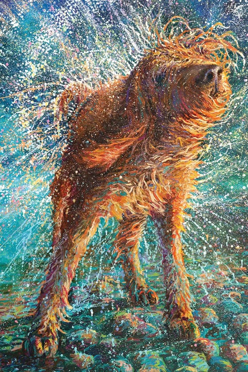 Oil painting of a brown shaggy dog shaking water off itself by iCanvas artist Iris Scott