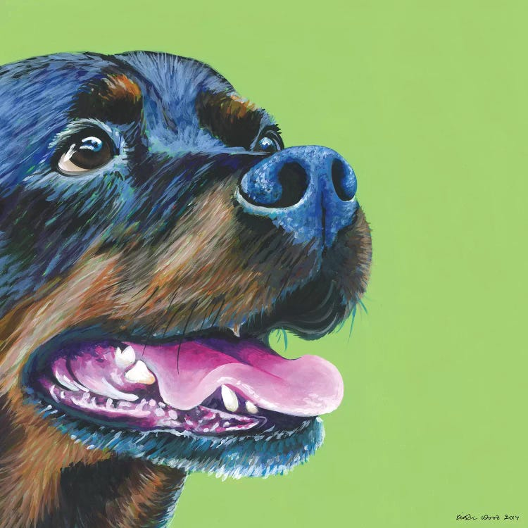 Portrait of a rottweiller against green background by female artist Kristin Wood