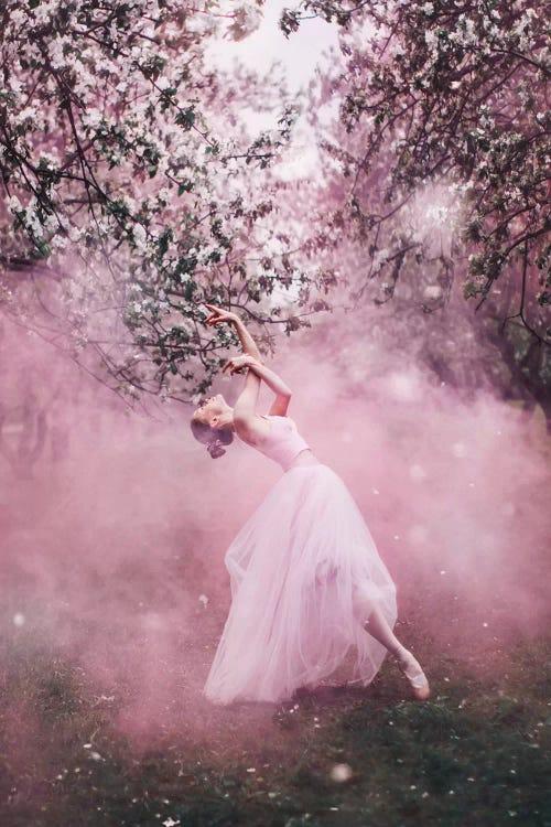 Photograph of ballerina in pink dress standing under pink flowered trees by female artist Hobopeeba