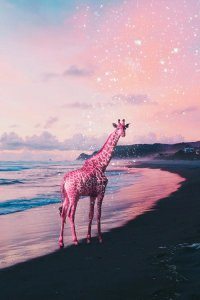 Virtual escapism wall art of a giraffe on a beach in front of a pink sky