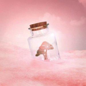 Earth Day wall art of tree in glass jar against pink sky by iCanvas artist Vivana Gonzalez