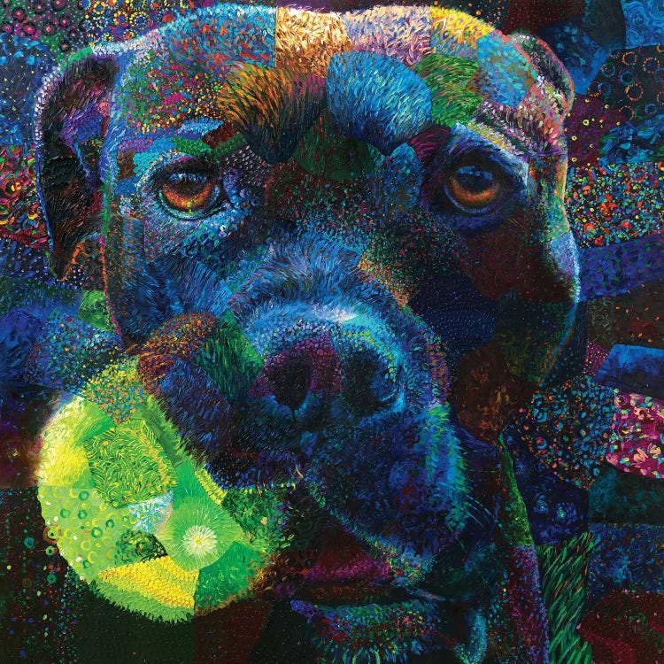 Colorful pet portrait of a dog holding a tennis ball in its mouth by iCanvas artist Iris Scott