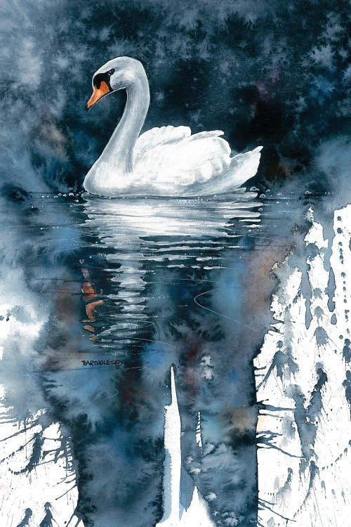 Wall art of swan on dark water by new icanvas artist Dave Bartholet