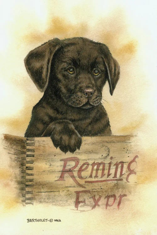 Wall art of brown lab puppy in a Remington crate by new creator Dave Bartholet