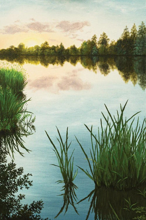 Nature art of a lake with tall grass reflecting the sky by new icanvas artist Marina Zotova