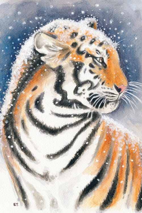 Wall art of tiger in snow by new icanvas creator Seven Sirens Studios